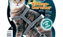 Шлейки для кошек: ТОП 6 товаров [рейтинг, цены, отзывы]