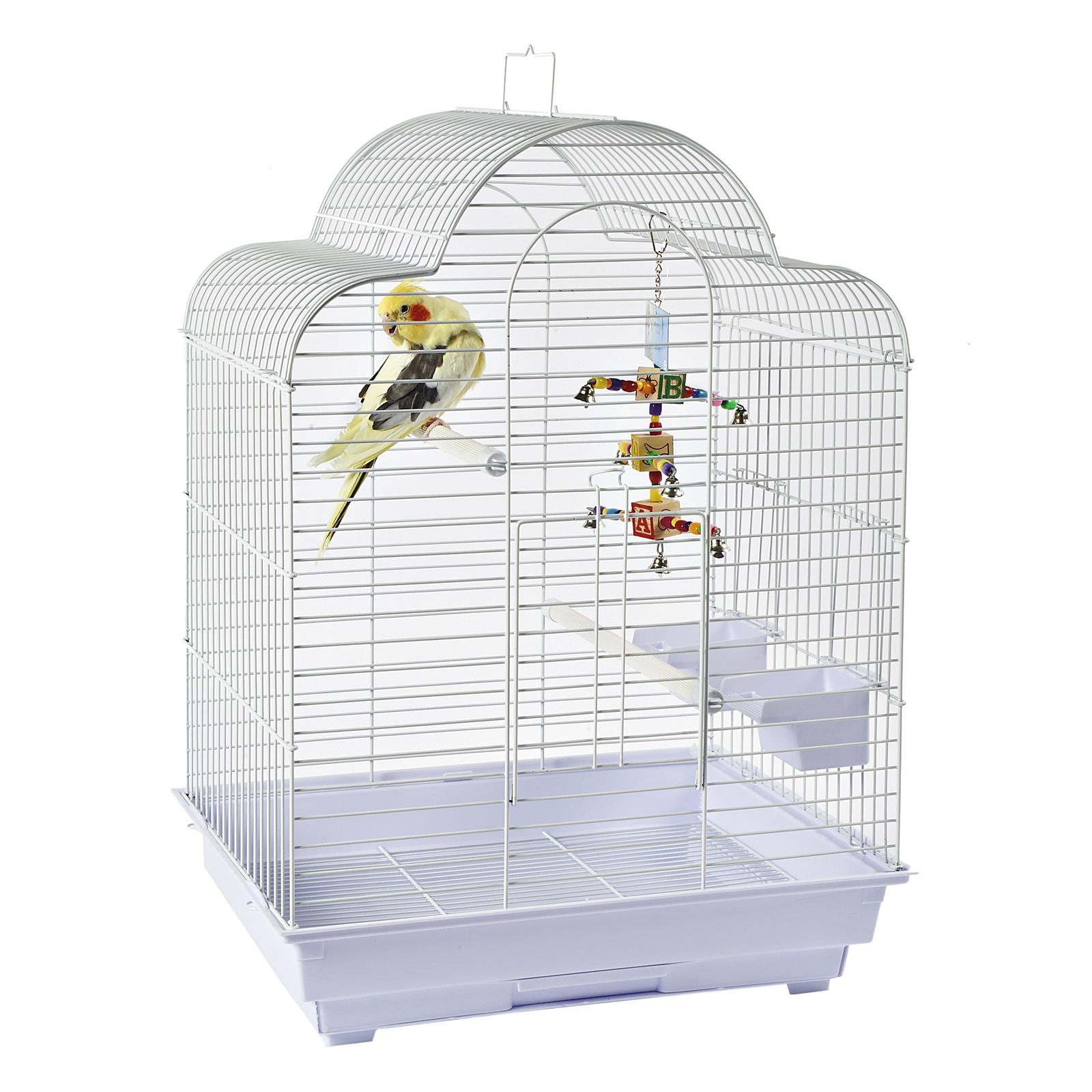 Как правильно подобрать клетку для попугая?