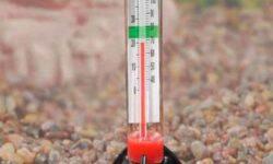 Температура воды в аквариуме для рыбок: какая должна быть оптимальная, как поддерживать, перегрев, переохлаждение, перепады, таблица для разных видов