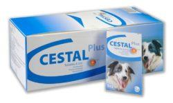 Цестал для собак: инструкция по применению, цена и аналоги