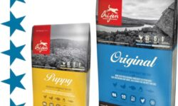 Корм для собак Orijen: отзывы, разбор состава, цена