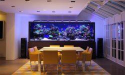 Как сделать морскую воду в домашних условиях для аквариума: схема, пропорции и дозировка соли