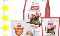 Корм Brit Care для кошек: отзывы, разбор состава, цена