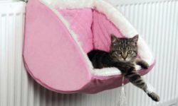 Гамаки для кошек: ТОП 8 товаров [рейтинг, цены, отзывы]