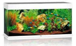 Продукция Juwel: комплектация и фильтр Ювель, осветительная система аквариумов Джувел