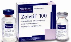 Золетил: инструкция по применению в ветеринарии, побочные действия и противопоказания