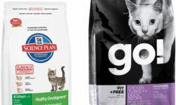 Рейтинг кормов для кошек 2020 (по качеству)