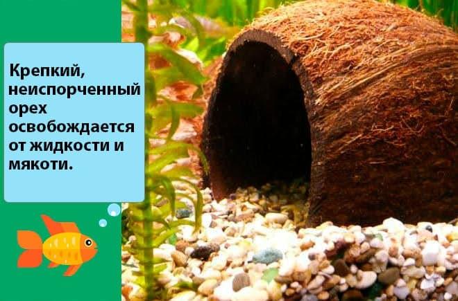 Декорации для аквариума своими руками: декор, украшения, декорарирование, как сделать (изготовление)
