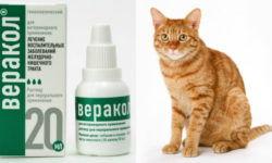 Веракол для кошек – инструкция по применению