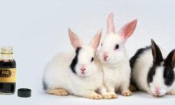 Как развести и пропоить кроликам йод: правильная схема