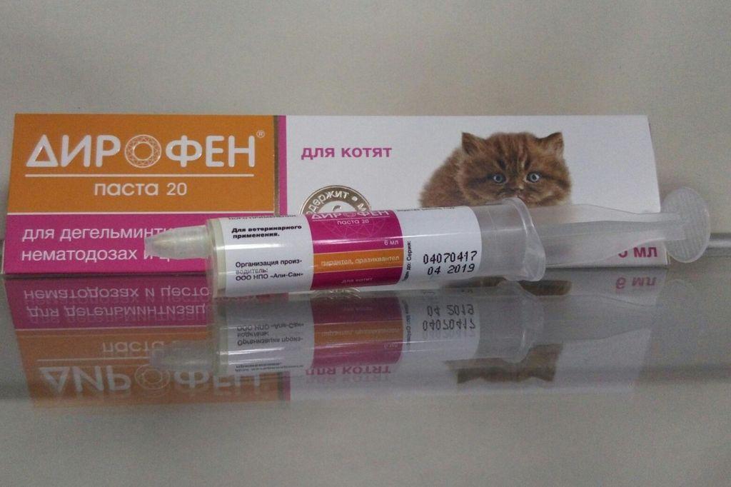 Дирофен: инструкция по применению таблеток от глистов для собак, дозировка и противопоказания