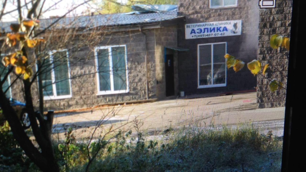 Ветеринарная клиника АЭЛИКА