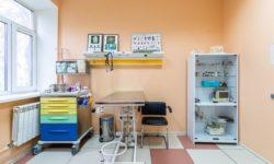 Ветеринарная клиника «ДоброВет»
