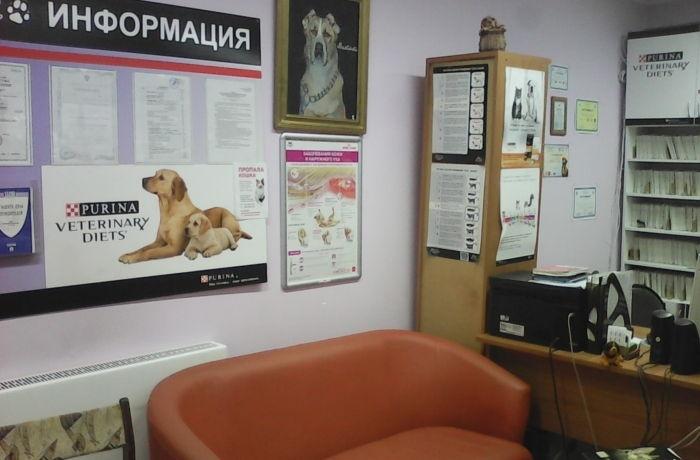 """Ветеринарная клиника """"GRANDVET"""""""