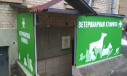 """Ветеринарная клиника """"ВетЛюкс"""""""