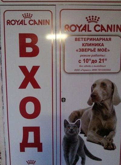 """Ветеринарная клиника """"Зверье мое"""""""